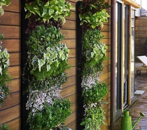 create your own vertical garden living walls and vertical gardens