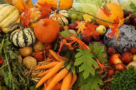 l fruit et legume salade automne fruits legumes accueil design et mobilier