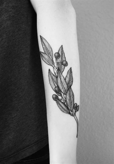 olive tattoo 1000 ideas about olive branch on