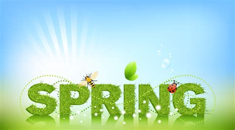 what is a spring spring has sprung darcie rian