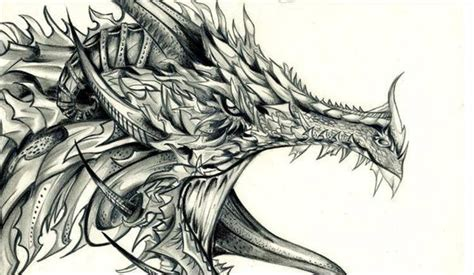 the best drawings of dragons 26 dragon pencil drawing free sketch designs creative