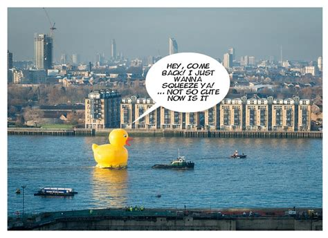 thames river jokes quack attack giant rubber duck on river thames