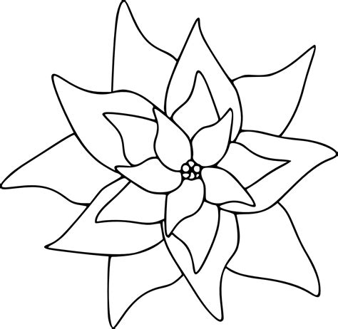 Poinsettia Image For Coloring Clipart Best Clipart Best Poinsettia Coloring Page
