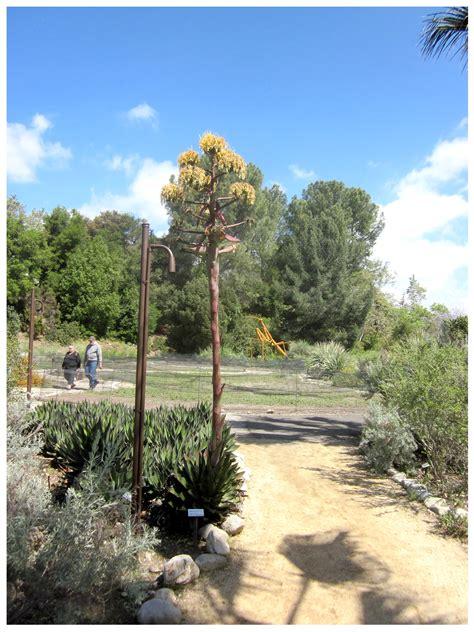 Quick Look Rancho Santa Ana Botanic Garden Rancho Reubidoux Rancho Santa Botanical Gardens