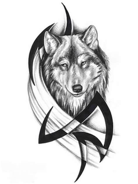 black and white wolf tattoo 60 tribal wolf tattoos designs and ideas