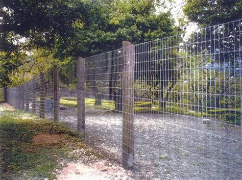 Backyard For Dogs Wood And Wire Fence Back Yard Ideas Pinterest Wire