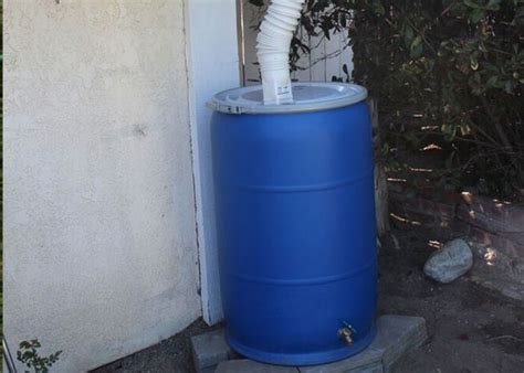 conserve precious water diy barrel garden club