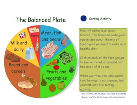 balanced diet balanced diet plate template
