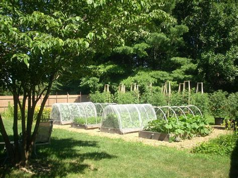 Vegetable Garden Fence Ideas Jbeedesigns Outdoor All About Outdoor