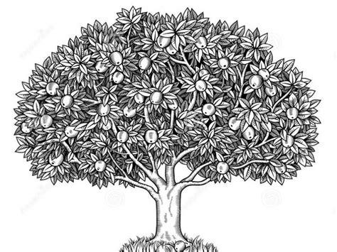 sketchbook lengkap gambar pohon dan tes wartegg agar lolos psikotest tes