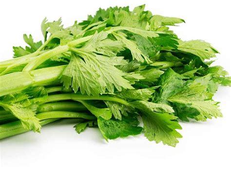 alimento alcalino lista de los alimentos m 225 s alcalinos elocuencia org