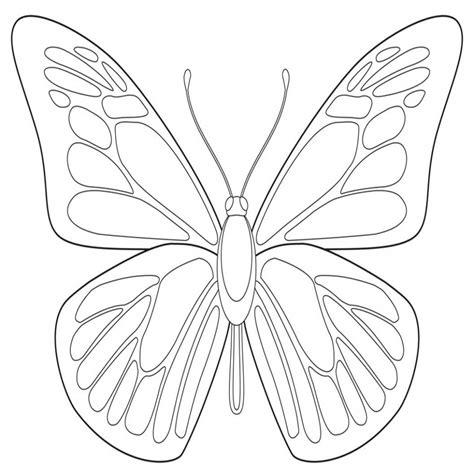fiori e farfalle disegni farfalle da colorare e stare