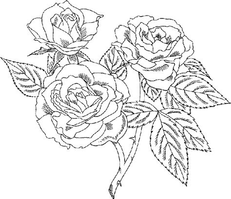Hard Rose Coloring Pages | roses flower coloring pages
