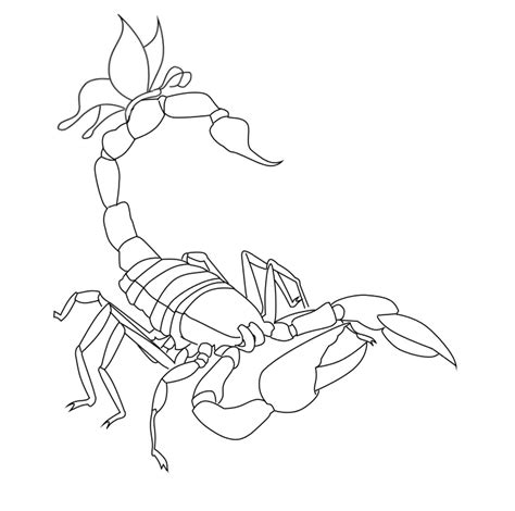 tattoo line drawings image from http fc08 deviantart net fs70 f 2010 257 5 d