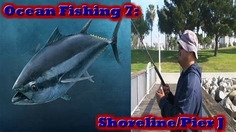 pier j fishing ocean fishing 7 shoreline pier j youtube