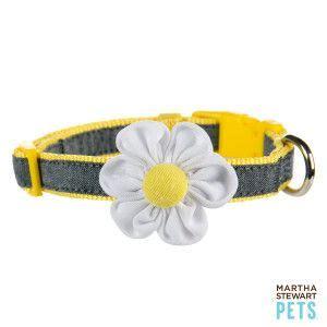 martha stewart collar 25 best ideas about on diy treats puppy treats and
