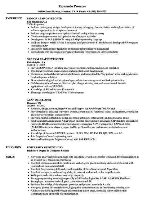 abap developer resume sles velvet