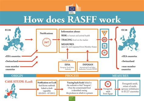 how does rasff work european commission