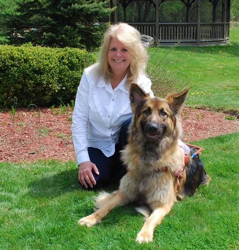 Guiding For The Blind Cards - guiding for the blind german shepherd photograph by