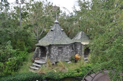 hagrid house hagrid s house picture of the wizarding world of harry potter orlando tripadvisor