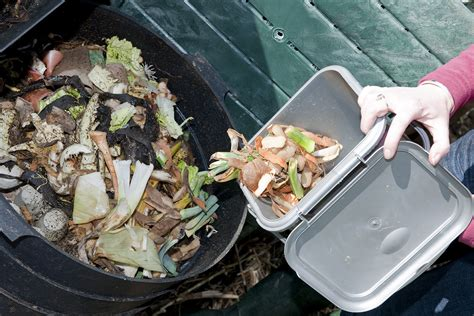 waste composter composting food waste in florida