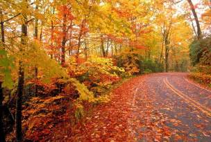 10 parks alabama beautiful fall foliage