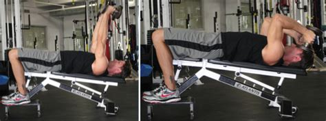 decline bench triceps extension decline dumbbell triceps extension huffpost