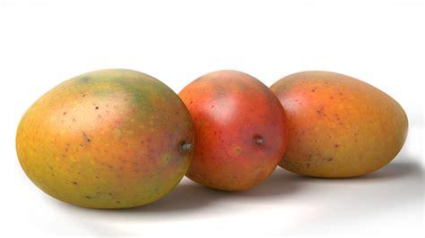 Mango Ma6521l 10 Original 3d model realistic mango