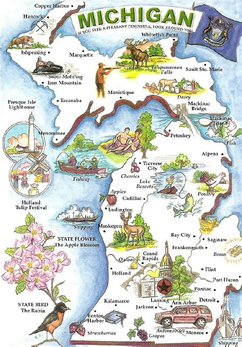 michigan on a map of the usa 438 best images about usa michigan on lakes