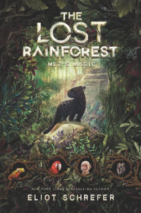the lost rainforest mez s magic children s book council