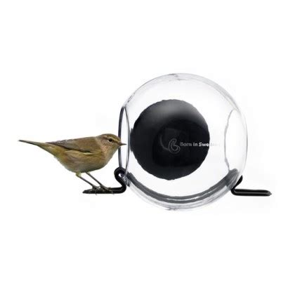 suction cup window bird feeder envirogadget