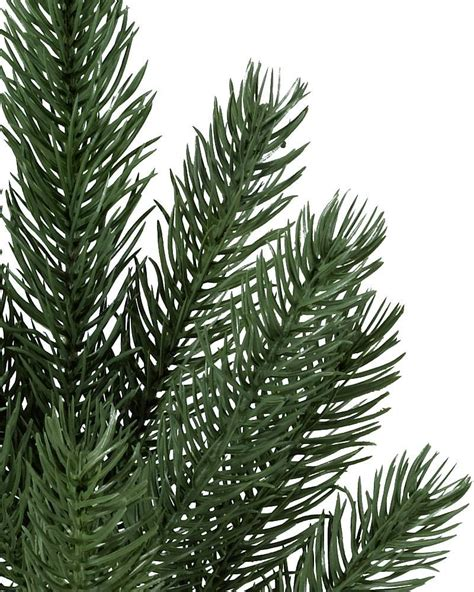 vermont pine xmas trees vermont white spruce narrow tree balsam hill