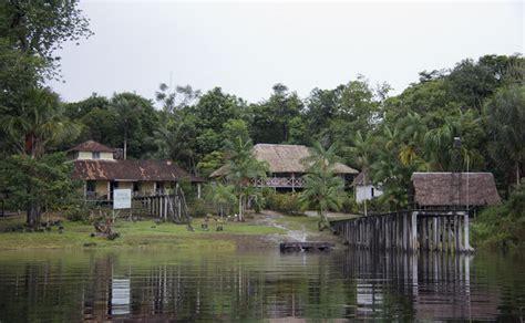 amazonas hängestuhl bandeira do amazonas estados e capitais do brasil