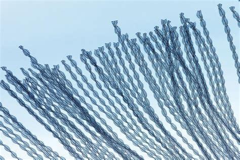 geographic pattern adalah jika burung meninggalkan jejak di langit mereka akan
