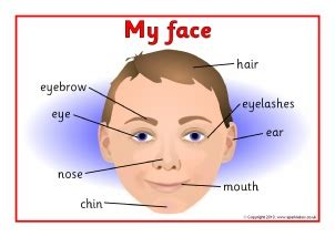 and our faces my faces teaching resources printables for early years ks1 sparklebox