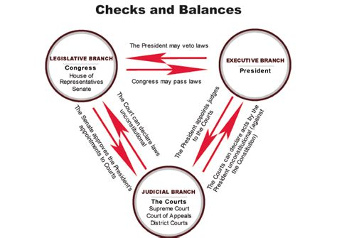 Background Check Government Government Checks And Balances Diagram Checks And Balances Graphic Organizer Elsavadorla