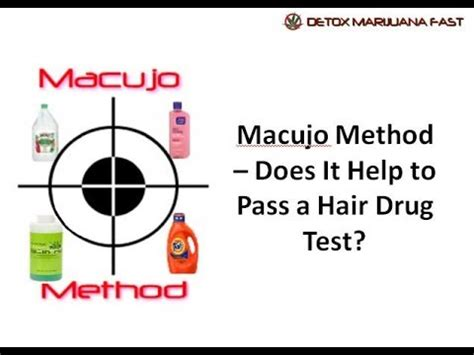 Best Way To Detox Hair For Test by Macujo Method Does It Help To Pass A Hair Test In