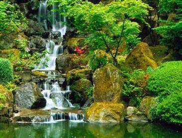 imagenes jardines japoneses movimiento imagenes de cascadas con movimiento imagui