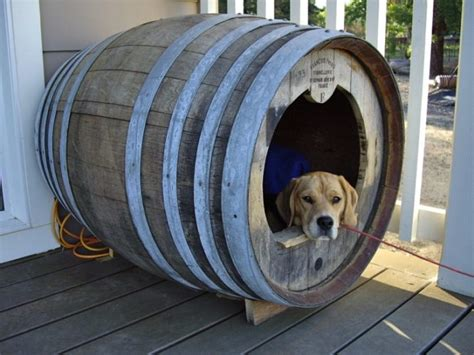 unusual dog houses 12 wonderfully unusual dog houses