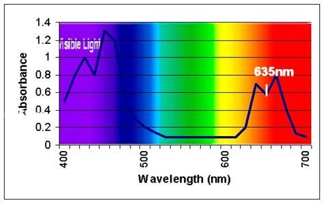 biobook leaf how does chlorophyll capture light energy