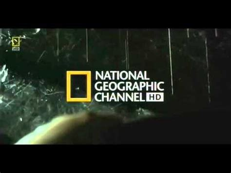 theme music national geographic it takes over you national geographic hd theme song