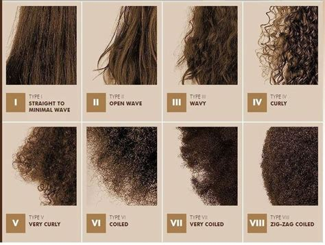 Types Of Hair Treatments by 25 Trending Hair Type Ideas On Black Curly