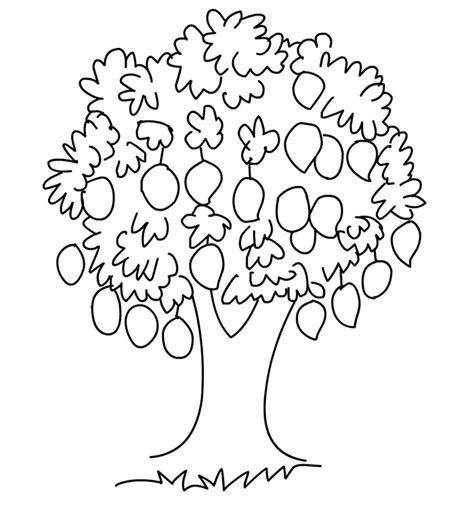 mango coloring pages preschool mango clipart coloring page pencil and in color mango