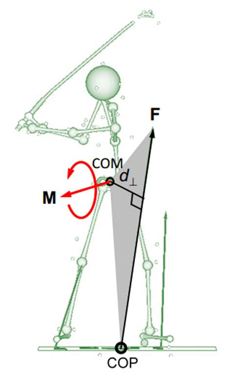 golf swing muscles why do tall golfers hit it farther