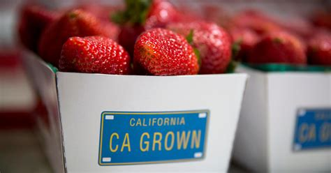 Is Finally Getting Serious by California Is Finally Getting Serious About Pesticides