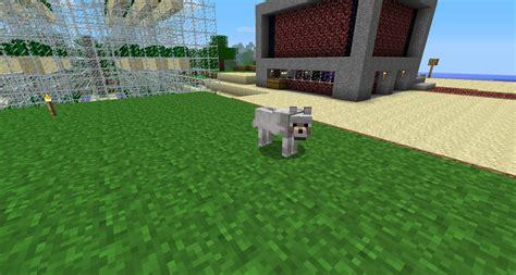 minecraft puppy minecraft my wolf sighting