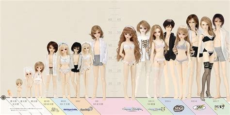 sizes of jointed dolls 1000 images about bjd on flora beautiful
