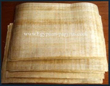 Paper From Papyrus - papyrus from genuine blank papyrus paper