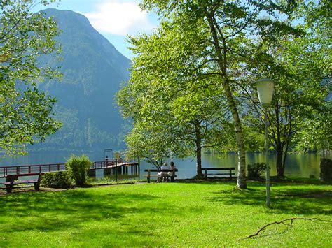 beautiful greenery of real nature scene wallpaper free iffrinaqil beautiful scenery