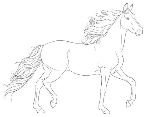 realistic pony coloring pages realistic horse jumping coloring pages